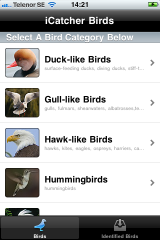iCatcher Birds for the iPhone